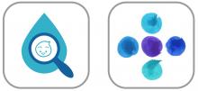 cerba-kids-application-mobile