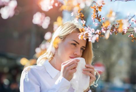 allergies pollen cerballiance